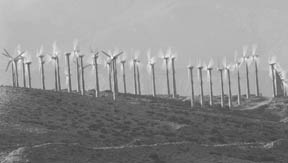 Windmills © PhotoDisc